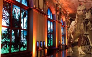 Bunte Beleuchtung der Wände als Ambientelicht mit Floorspots und anderer Eventtechnik zu mieten